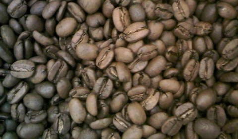ROASTED GAYO